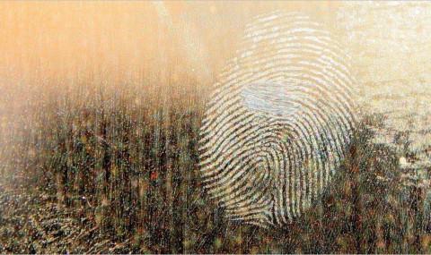 Que faire si vous êtes victime d'une usurpation d'identité sur Facebook, Twitter ou autre ?
