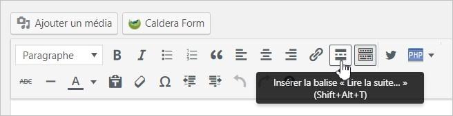 Insérer un bouton Lire la suite sur WordPress