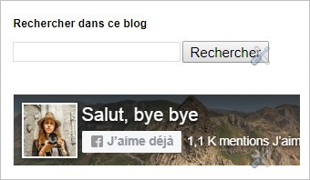 Like Box Facebook sur Blogger