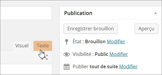 Wordpress - Afficher le code HTML