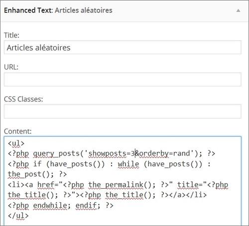 Mettre du PHP dans un widget WordPress