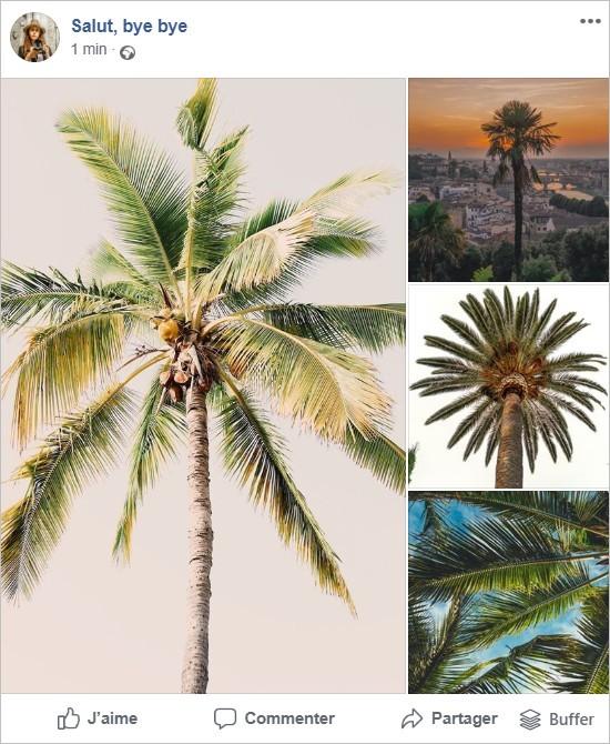 Affichage de 4 photos au format carré