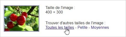 Résultat de la recherche d'image inversée sur Google