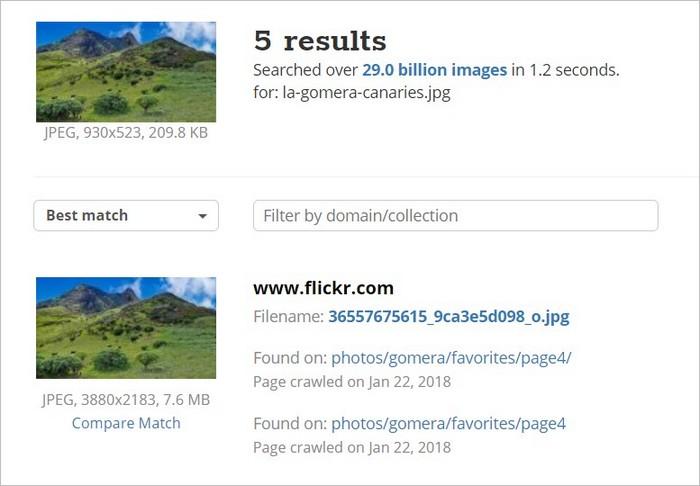 Résultats de recherche d'image inversée sur TinEye