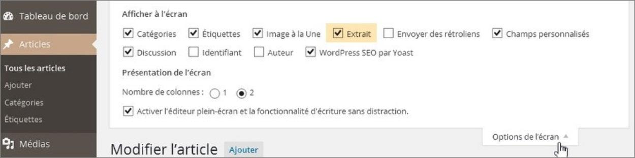 Ecrire des extraits personnalisés WordPress
