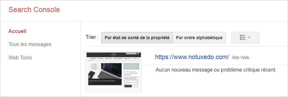 Google Search Console - Accueil