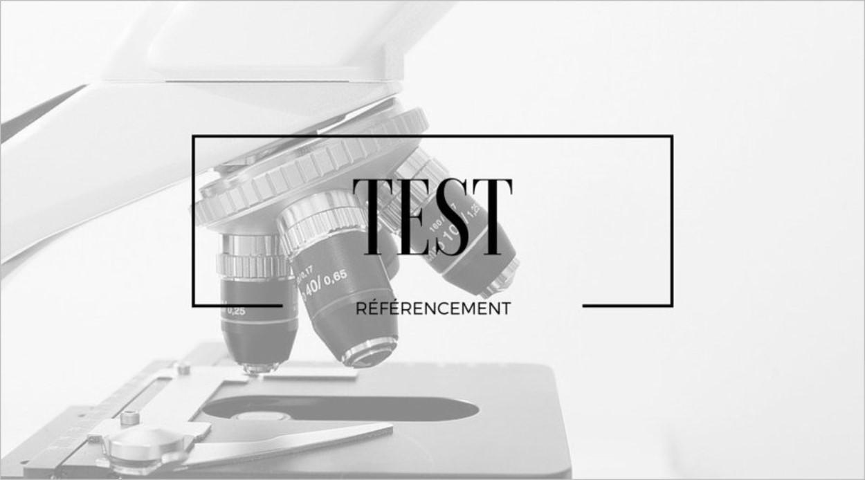 Test de référencement