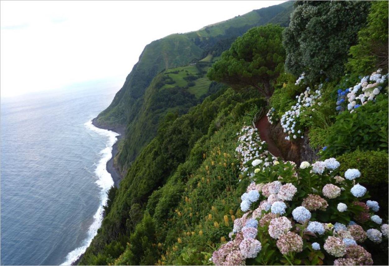 Ile São Miguel dans l'archipel des Açores