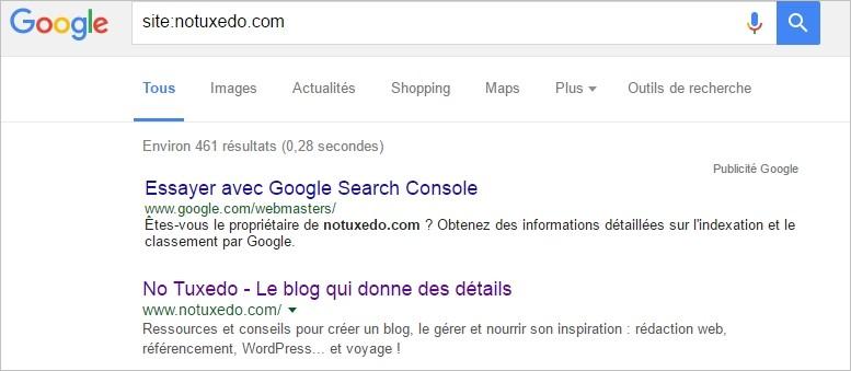 Voir les pages indexées sur Google avec la commande site