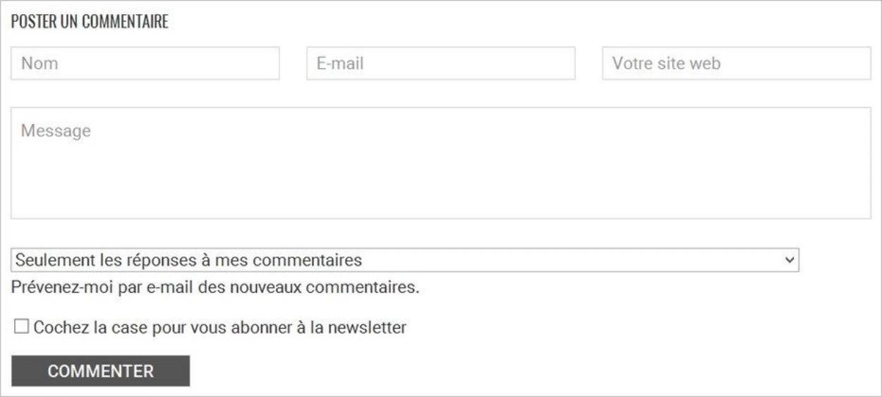 Formulaire de commentaire sur le blog