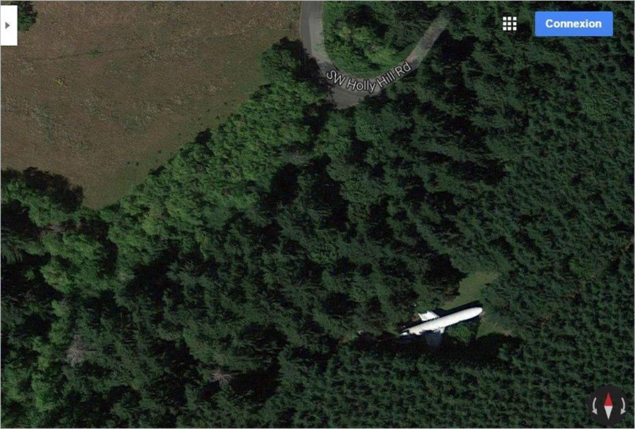Avion au milieu des bois