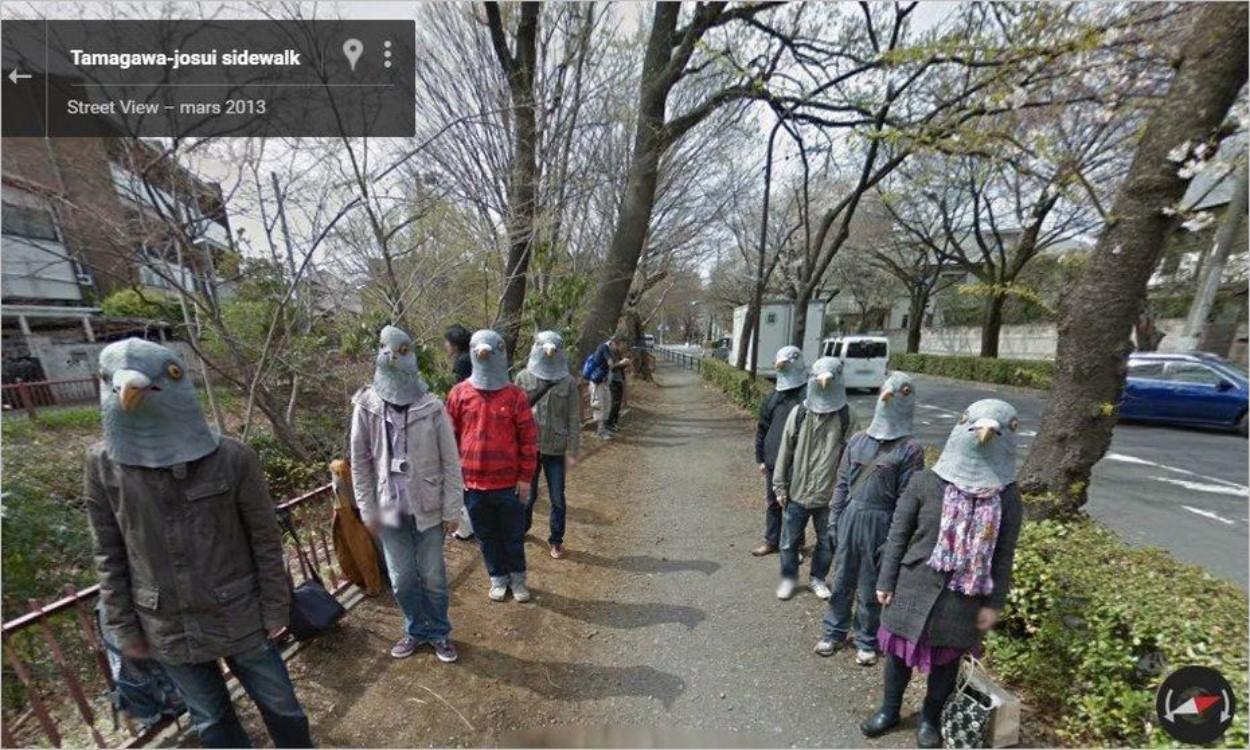 Pigeons sur Google Street View