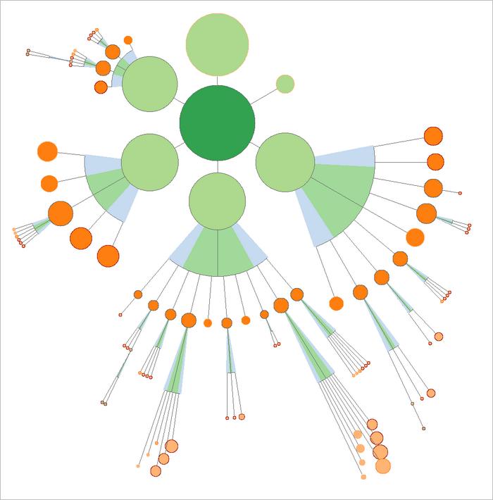 Visualisation des cocons sémantiques