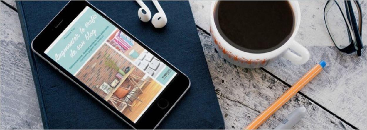 Augmenter le trafic de son blog - Avis sur le livre