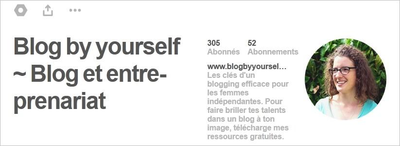 Biographie optimisée sur Pinterest