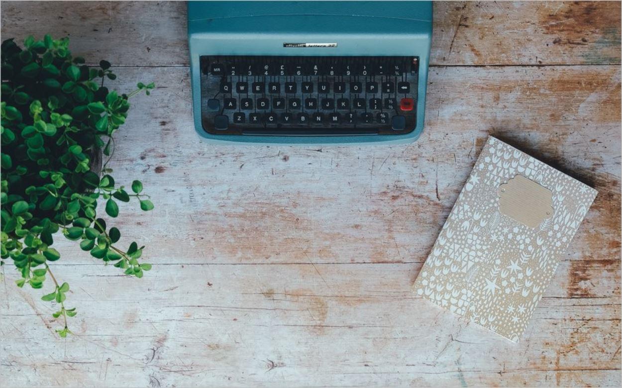 Carnet, machine à écrire et plante verte pour cette photo simple et efficace