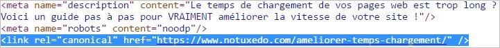 Une URL canonique