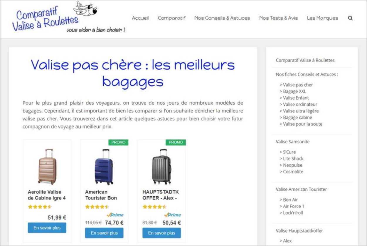 Exemple de blog de niche sur les valises à roulettes