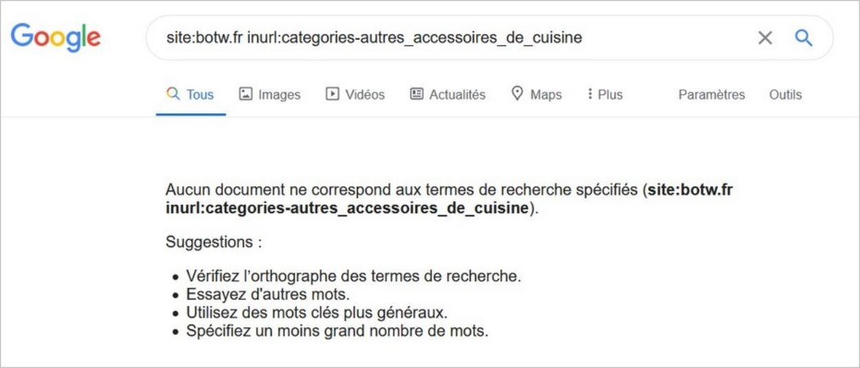 Paramètres d'URL non indexés