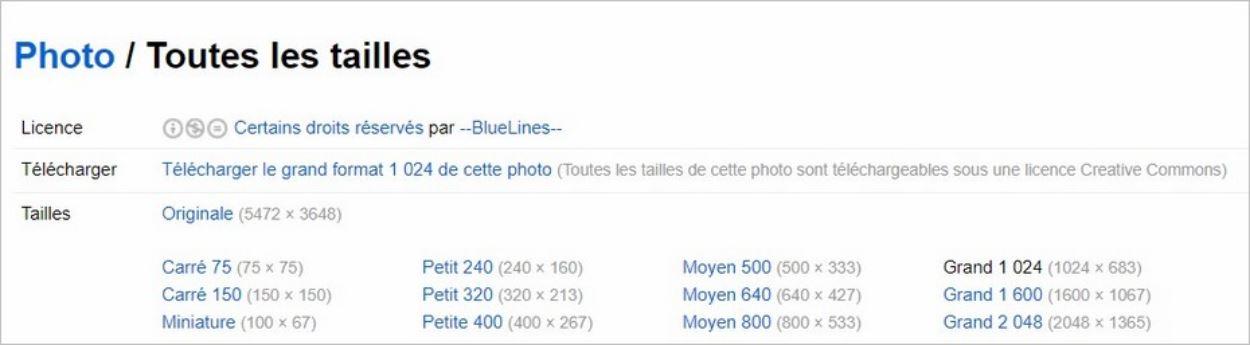 Description de la licence des photos sur Flickr