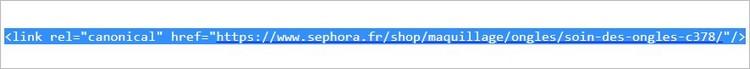 Une URL canonique avec rel canonical