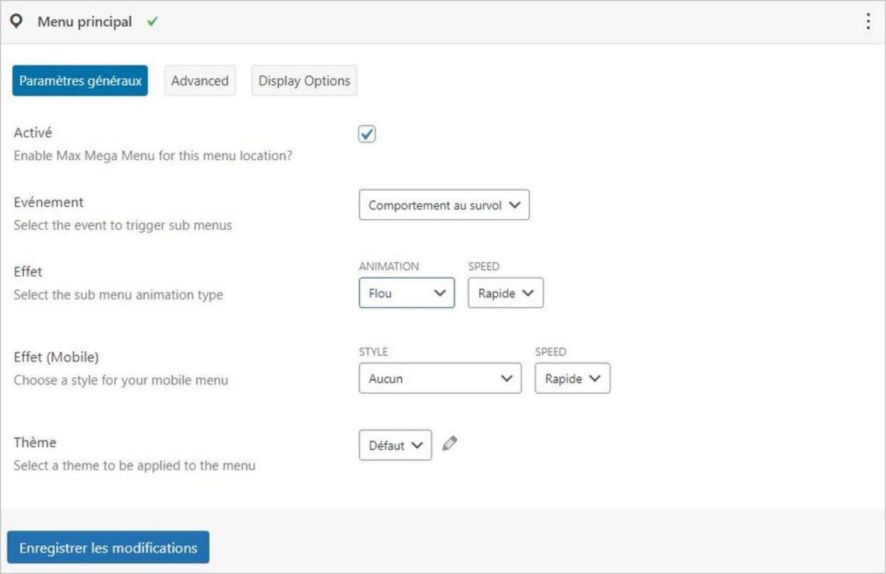 Options pour créer un menu déroulant sur WordPress